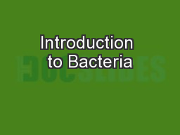 Introduction to Bacteria PowerPoint PPT Presentation