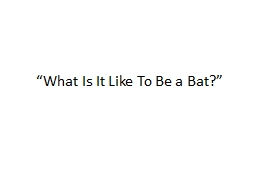 """What Is It Like To Be a Bat?"" PowerPoint PPT Presentation"