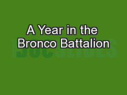 A Year in the Bronco Battalion