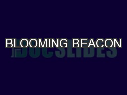 BLOOMING BEACON PowerPoint PPT Presentation