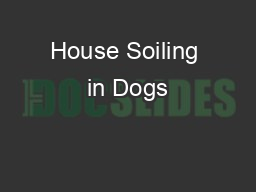 House Soiling in Dogs