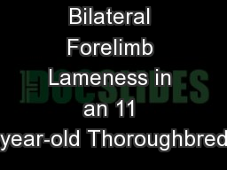 Bilateral Forelimb Lameness in an 11 year-old Thoroughbred