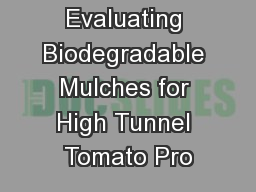 Evaluating Biodegradable Mulches for High Tunnel Tomato Pro