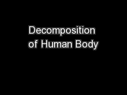 Decomposition of Human Body