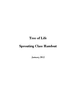 Tree of Life Sprouting Class Handout January 2012