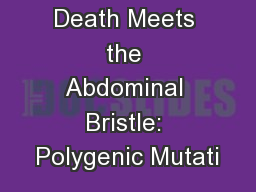 The Red Death Meets the Abdominal Bristle: Polygenic Mutati