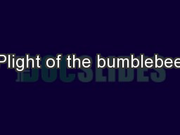 Plight of the bumblebee PowerPoint PPT Presentation