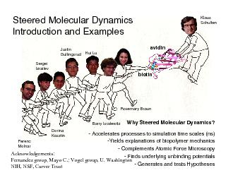 of Ligand UnbindingBiotinavidinbiotinAFMDisplacement of PowerPoint PPT Presentation