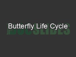 Butterfly Life Cycle PowerPoint PPT Presentation