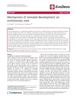 REVIEWOpenAccessMechanismsofstomataldevelopment:anevolutionaryviewAnne