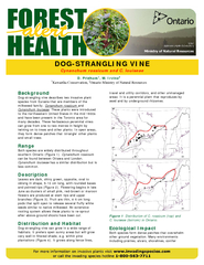 D. PridhamOntario Ministry of Natural Resources Background Dog-strangl
