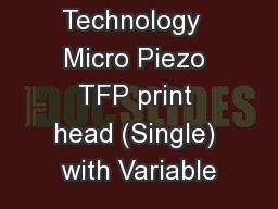 Printing Technology  Micro Piezo TFP print head (Single) with Variable