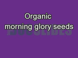 Organic morning glory seeds