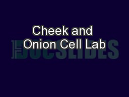 Cheek and Onion Cell Lab