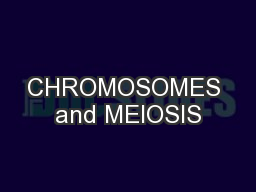 CHROMOSOMES and MEIOSIS PowerPoint PPT Presentation