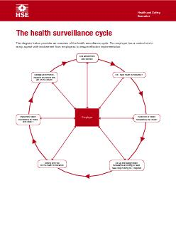 The health surveillance cycleThe diagram below provides an overview of