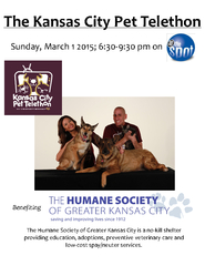 The Kansas City Pet Telethon