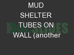 MUD SHELTER TUBES ON WALL (another