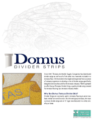 Why Use Domus Terrazzo Divider Strip? PowerPoint PPT Presentation