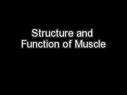Structure and Function of Muscle