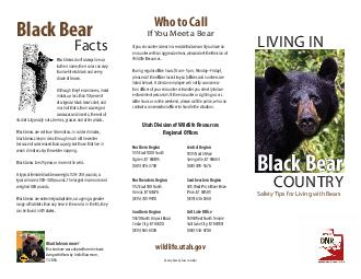 LIVING IN COUNTRY Safety ips for Living with Bears Black Bear Facts Black bears dont always live up to their name their color can vary from white to black and every shade of brown