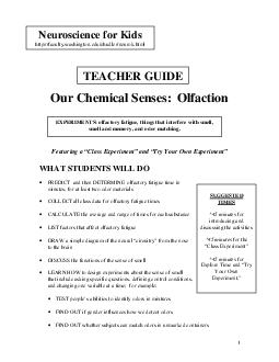 Our Chemical Senses  Olfaction Featuring a Class Experiment and Try Your Own Experiment WHAT STUDENTS WILL DO PREDICT and then DETERMINE olfactory fatigue time in minutes for at least two odor materi