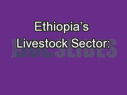 Ethiopia's Livestock Sector: PowerPoint PPT Presentation