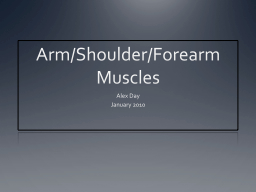 Arm/Shoulder/Forearm Muscles