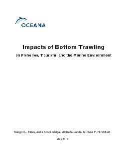 Impacts of Bottom Trawlingon Fisheries, Tourism, and the Marine Enviro