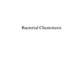 Bacterial Chemotaxis