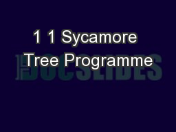 1 1 Sycamore Tree Programme PowerPoint PPT Presentation