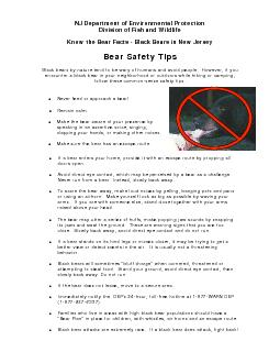 NJ Department of Environmental Protection Division of Fish and Wildlife Know the Bear Facts  Black Bears in New Jersey Bear Safety Tips Black bears by nature tend to be wary of humans and avoid peopl