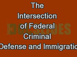 The Intersection of Federal Criminal Defense and Immigratio