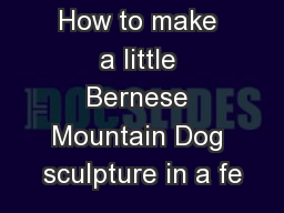 How to make a little Bernese Mountain Dog sculpture in a fe