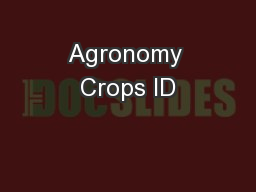 Agronomy Crops ID