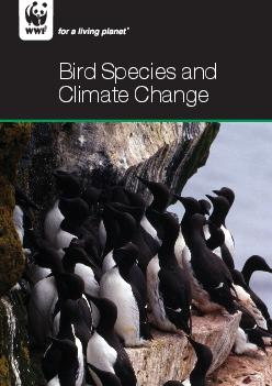 Bird Species and Climate Change  Bird Species and Climate Change Global Status Report  WWFAustralia