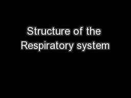 Structure of the Respiratory system PowerPoint PPT Presentation