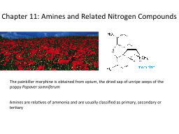 Chapter 11: Amines and Related Nitrogen Compounds