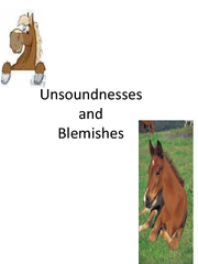 Unsoundnesses