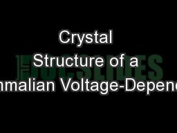Crystal Structure of a Mammalian Voltage-Dependent