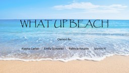 WHAT UP BEACH PowerPoint PPT Presentation