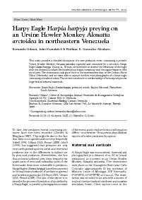 . Complete sequence of 24 frames of an Ursine Howler monkey preyed upo