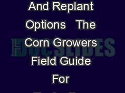 The Corn Growers Field Guide For Evaluating Crop Damage And Replant Options   The Corn Growers Field Guide For Evaluating Crop Damage And Replant Options Author Dr PDF document - DocSlides