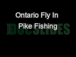 Ontario Fly In Pike Fishing