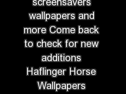 Horse Media Downloads Download free horse screensavers wallpapers and more Come back to check for new additions Haflinger Horse Wallpapers Personalize your home or office with a free Haflinger screen