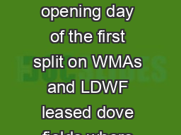 Onehalf hour before sunrise to sunset for opening day of the first split on WMAs and LDWF leased dove fields where shooting hours will be  p