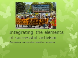Integrating the elements of successful activism