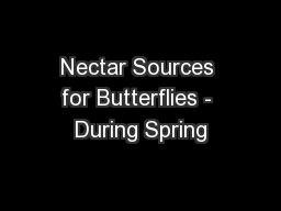 Nectar Sources for Butterflies - During Spring