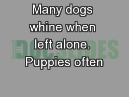 Many dogs whine when left alone. Puppies often