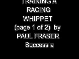 TRAINING A RACING WHIPPET  (page 1 of 2)  by   PAUL FRASER   Success a